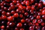 cranberries_562459
